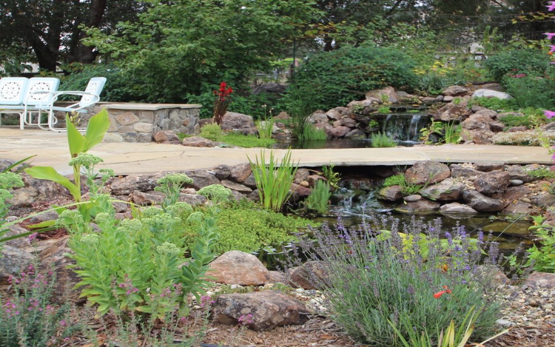 The Future of Landscaping is Ecological: 5 Tips for Professionals and Homeowners